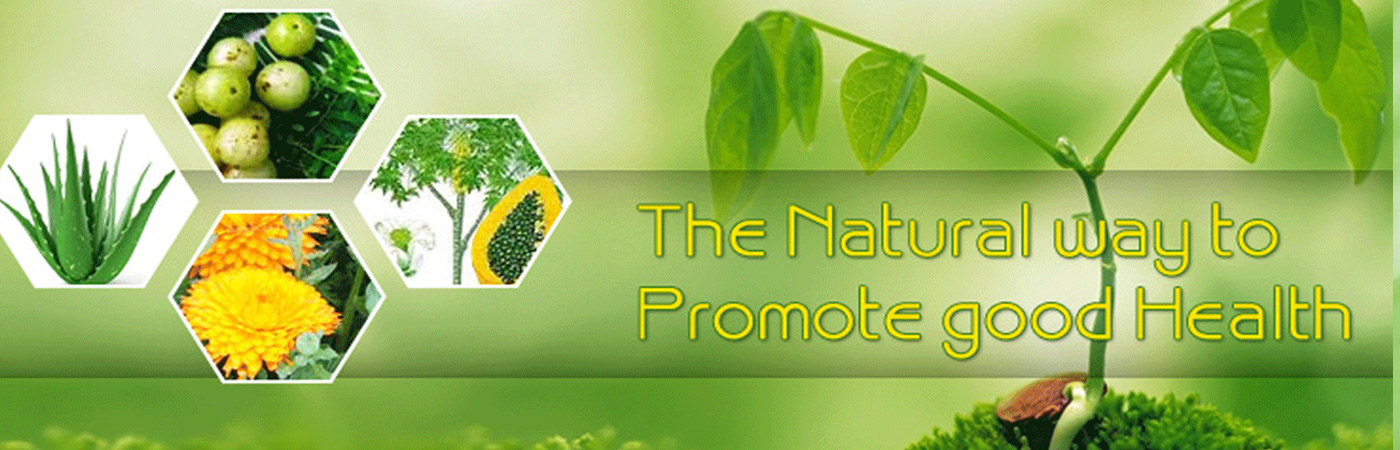 North India Life Sciences Private Limited